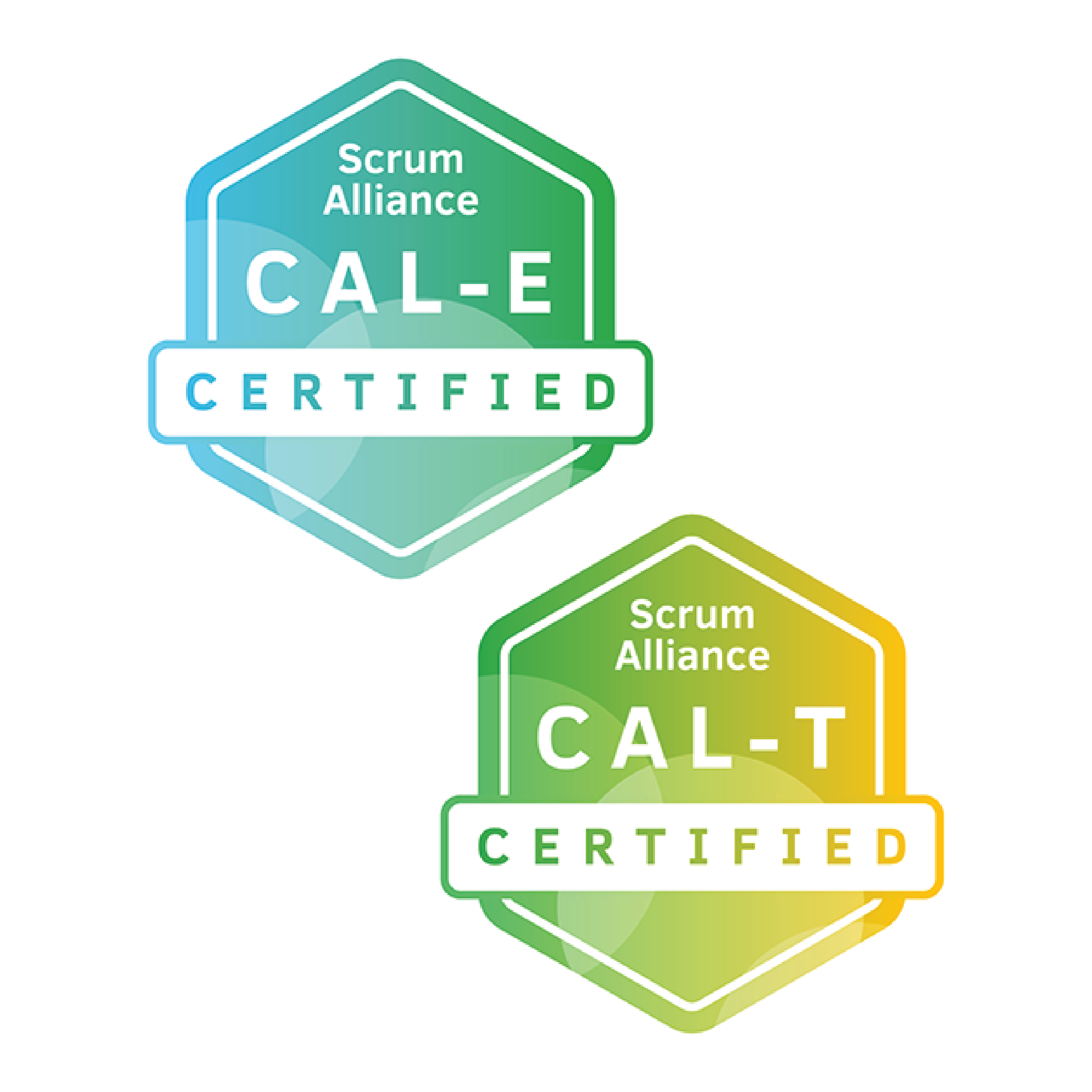 CALET-Badge.png